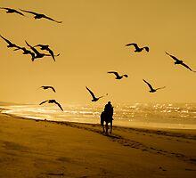 Sun, Surf & 'Cross Street' by Julie Begg