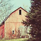 november barn by beverlylefevre
