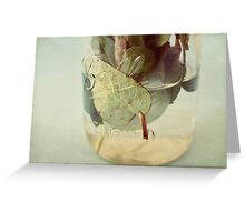 leaves underwater Greeting Card