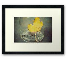 botanique Framed Print