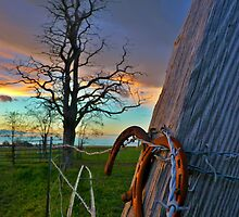 Lucky fence - sunset on a farm by Dan Florence