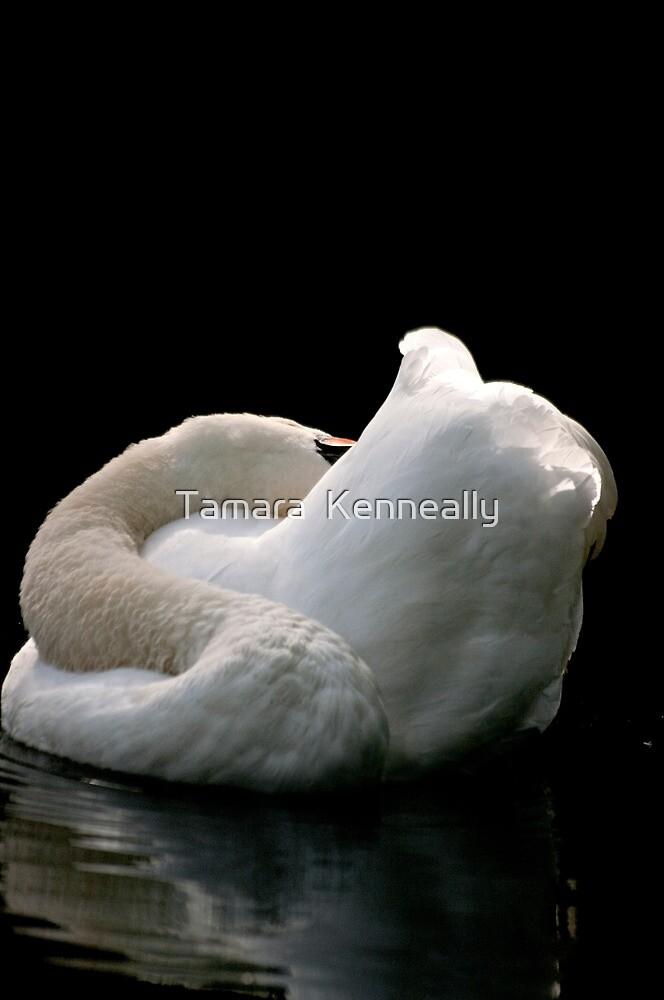 Swan Beauty IV by Tamara  Kenneally