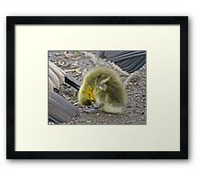 If my neck was as long as momma's bath time would be easier Framed Print