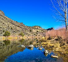 Rio Grande River, NM by Darryl Brewer