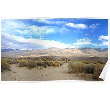Desertscape 2 Poster