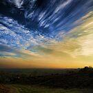 Bircher Common by Jon Harbottle