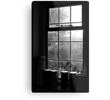 Looking through the kitchen window Metal Print