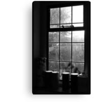 Looking through the kitchen window Canvas Print
