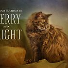Merry & Bright by Lynn Starner