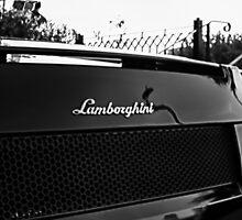 Lambo b&w by Beau Williams