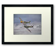 The Old Flying Company -  Ferocious Frankie, And MH434 Framed Print