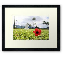 Kokoda Memorial Poppy Framed Print