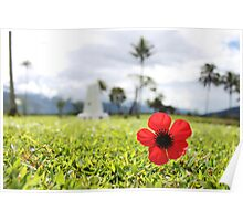 Kokoda Memorial Poppy Poster