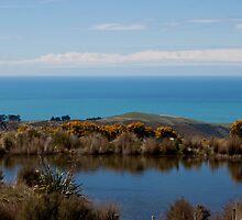 Akaroa, New Zealand by LeahK
