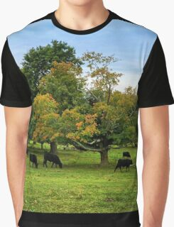 Country scene in New England Graphic T-Shirt