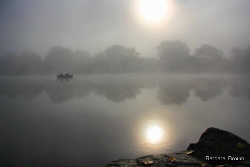 Moody River by Barbara  Brown