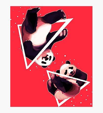 Rad Pandas Photographic Print