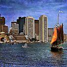 Sail Boston -Roseway by LudaNayvelt