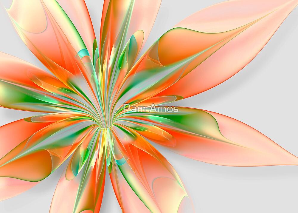 Orange Burst by Pam Amos
