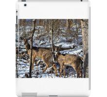 Pennsylvania Deer in Winter iPad Case/Skin