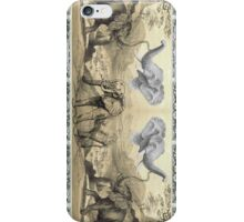 elephants iPhone Case/Skin