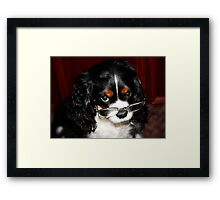 Are You Talking About Me !!! Framed Print