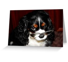 Are You Talking About Me !!! Greeting Card