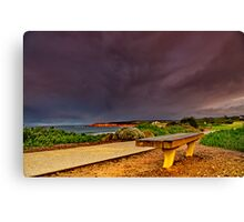 """A Seat In A Storm"" Canvas Print"