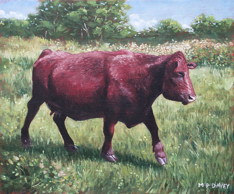 fat cow running by martyee