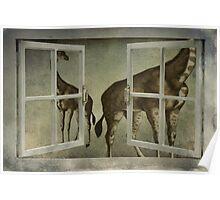 I See Giraffes Poster