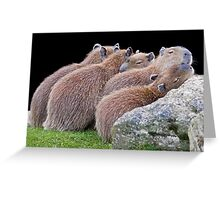 Safety in Numbers Greeting Card