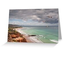 Southern Flyby,Anglesea,Great Ocean Road Greeting Card