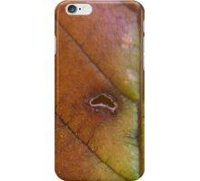 Fallen Leaf 7A iPhone Case/Skin