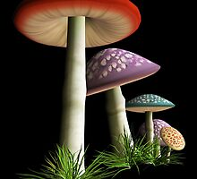 Magic Mushrooms by pjwuebker