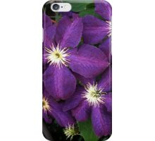 Purple Clematis iPhone Case/Skin