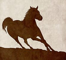 War Horse by Zoe Toseland