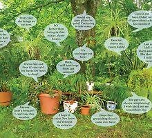 Houseplants Interpreted by Donna Catanzaro