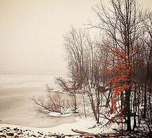Winters frozen lake by woodnimages