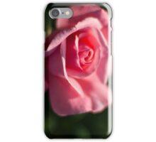 Rose #191 iPhone Case/Skin