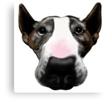 Front Faced Bull Terrier Canvas Print
