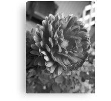Flora GreyScale Canvas Print