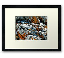 Colouful Rocks at Rocky Cape National Park, Tasmania, Australia. Framed Print