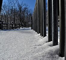 Winter Poles by wjwphotography