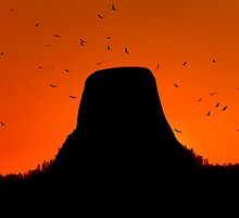 Sunset over Devils Tower .2 by Alex Preiss
