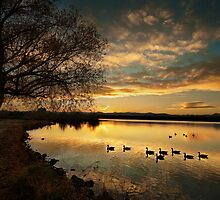 Sunset on Sloans Lake by Armando Martinez