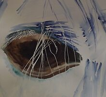 The eye of the horse by dmallon