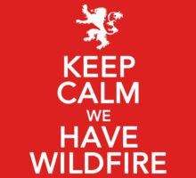 Keep Calm We Have Wildfire. by JcDesign