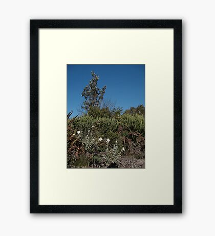 Lazy Tree Framed Print