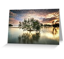 Once upon a Mangrove Greeting Card