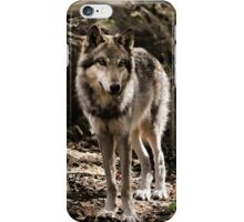 Behold the Eyes iPhone Case/Skin